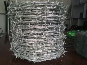 有刺的-电汇-优良品质从中国制造商