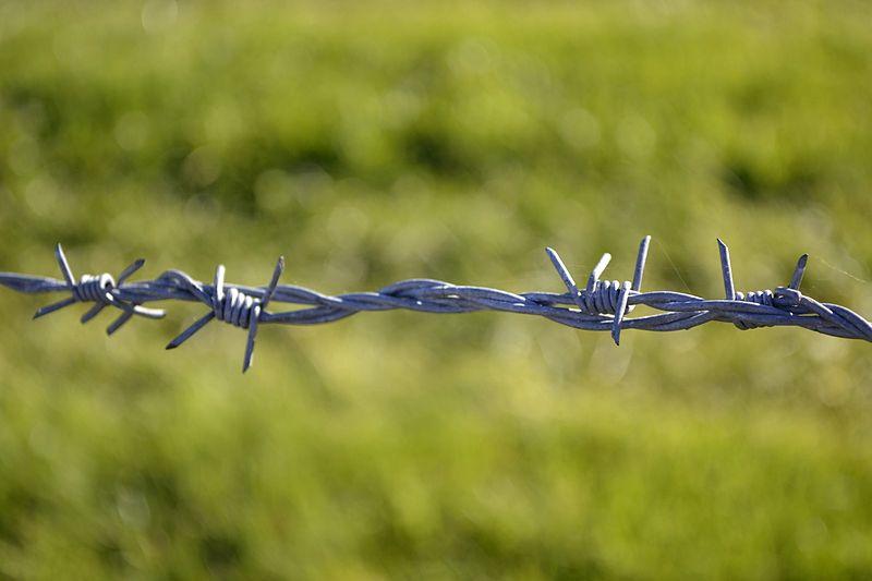 铁丝网是第一电汇技术